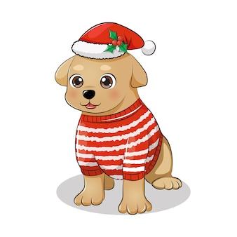 座ってポーズで冬のセーターとサンタの帽子をかぶっているかわいい犬。クリスマスの動物