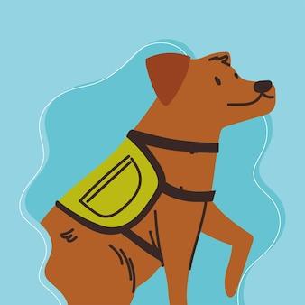 ハーネスベストとかわいい犬