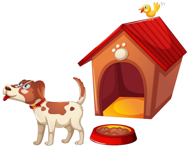 A cute dog with its house on white