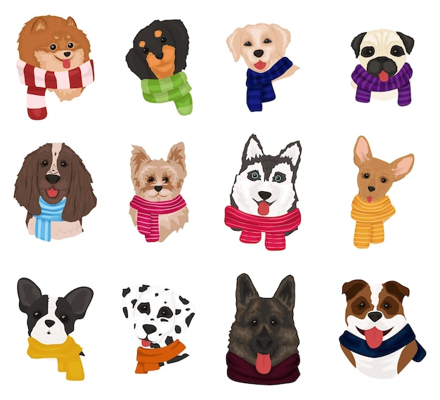 Cute dogs in knitted scarves.
