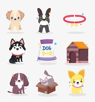 Cute dogs puppy food collar house domestic cartoon animal, collection pets