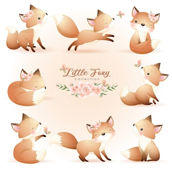 Cute doodle foxy poses with floral illustration