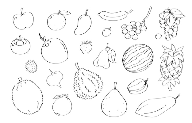 Cute doodle fruit cartoon  and objects.