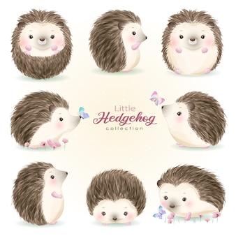 Cute doodle hedgehog set with watercolor illustration