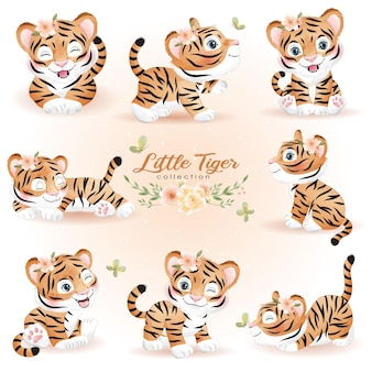 Cute doodle tiger poses with watercolor illustration set