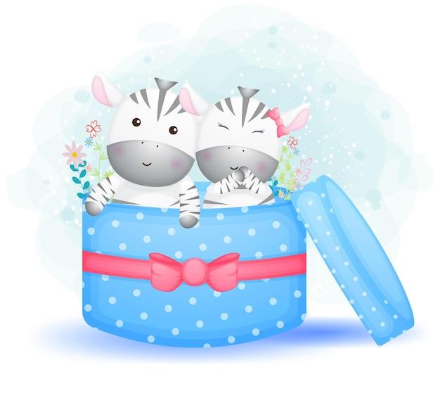 Симпатичные каракули пара зебры внутри подарочного мультипликационного персонажа