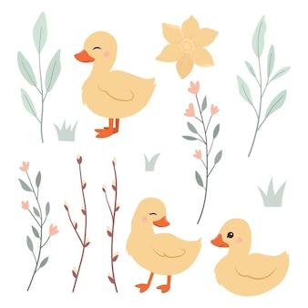 귀여운 부활절 오리와 잎 가지 그림