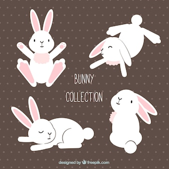 Cute easter rabbit in different postures