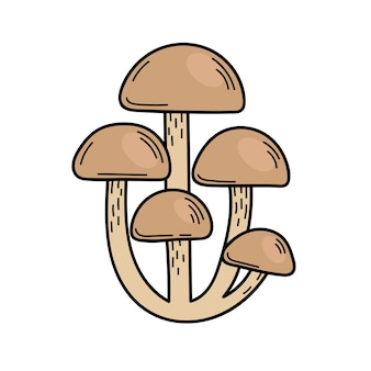 Cute edible mushroom in doodle style. ingredients for cooking, salads. autumn plant harvesting. vector hand illustration