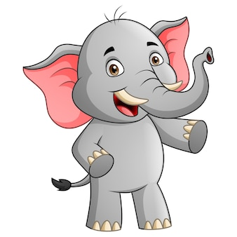Cute elephant cartoon character   illustration