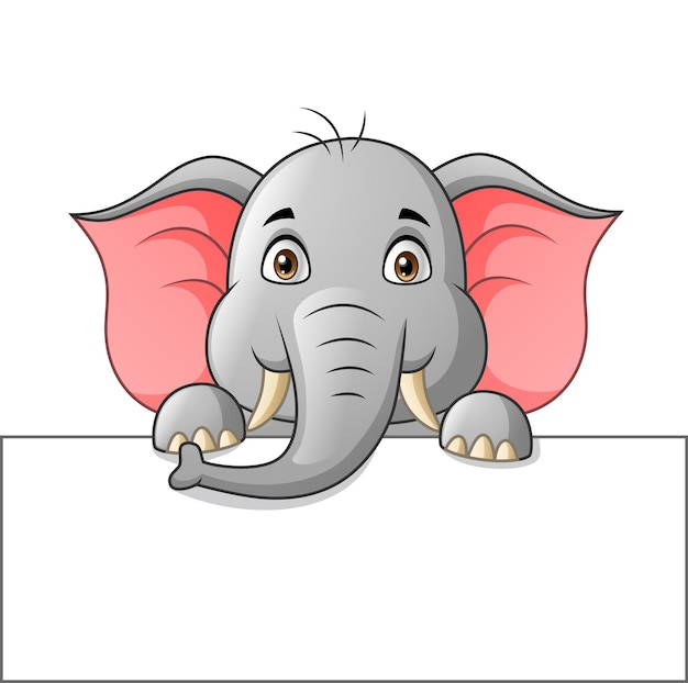 Cute elephant cartoon with white blank paper   illustration
