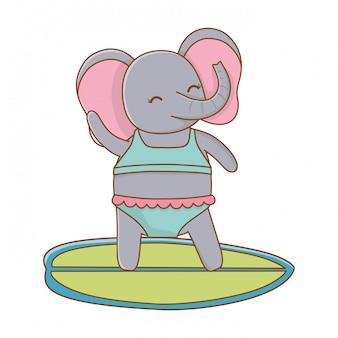 Cute elephant enjoying summer vacations