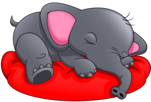 흰색 배경에자는 귀여운 코끼리