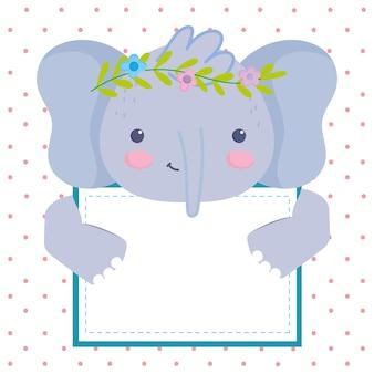 Cute elephant with blank board