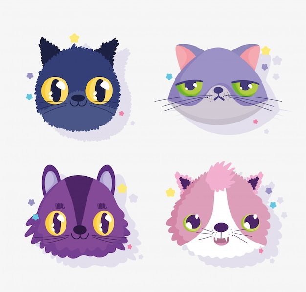 Cute faces cats differents gesture domestic cartoon animal, collection pets