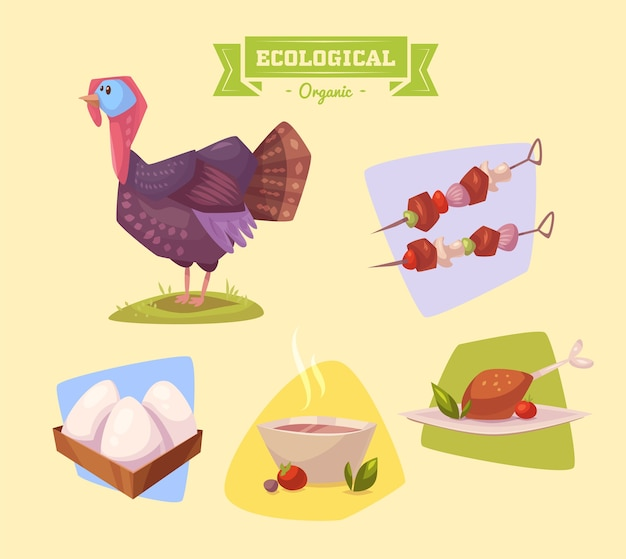 Cute farm animal turkey . illustration of isolated farm animals set on colored background.  flat vector illustration. stock vector.