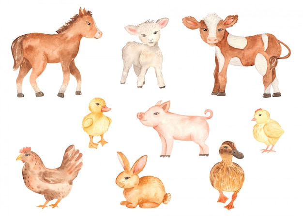 귀여운 농장 동물 수채화