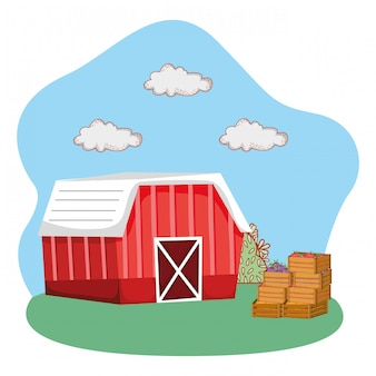 Cute farm cartoon