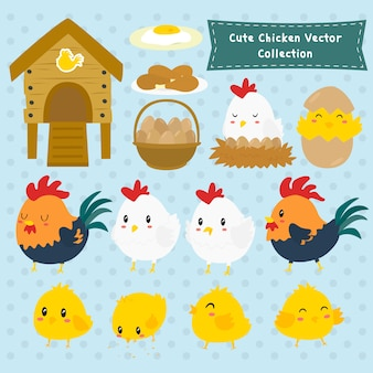 Cute farm chicken vector collection