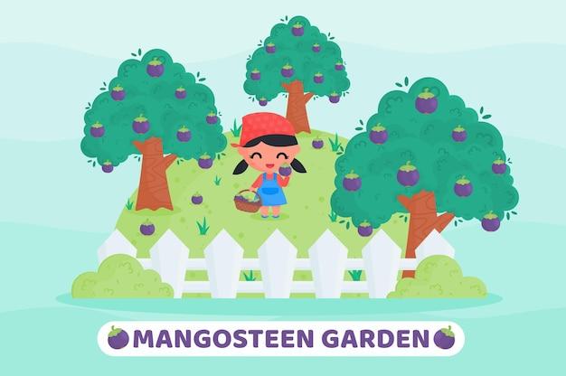 Cute farmer harvesting fruit in the mangosteen garden cartoon illustration