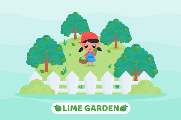 Cute farmer harvesting lime in the lime garden with holding fruit basket full of limes