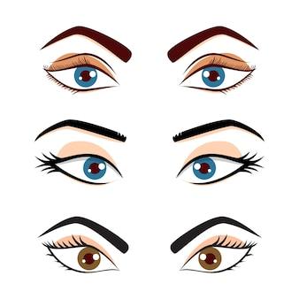 かわいい女性の女性の目と眉毛セットは白い背景で隔離