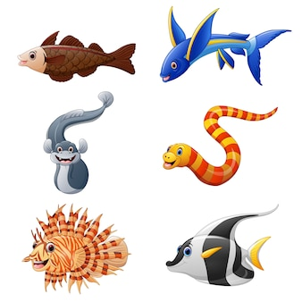 Cute fish collection set