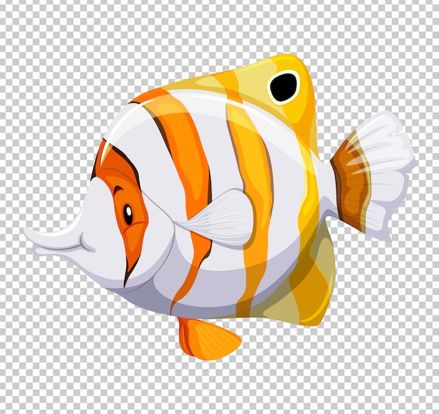 Cute fish on transparent