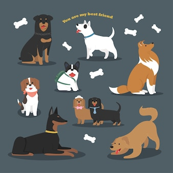 Cute flat character design of dog breeds collection