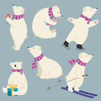 Cute flat design polare bears collection