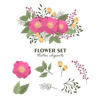 Cute floral isolated bouquets clipart flowers set