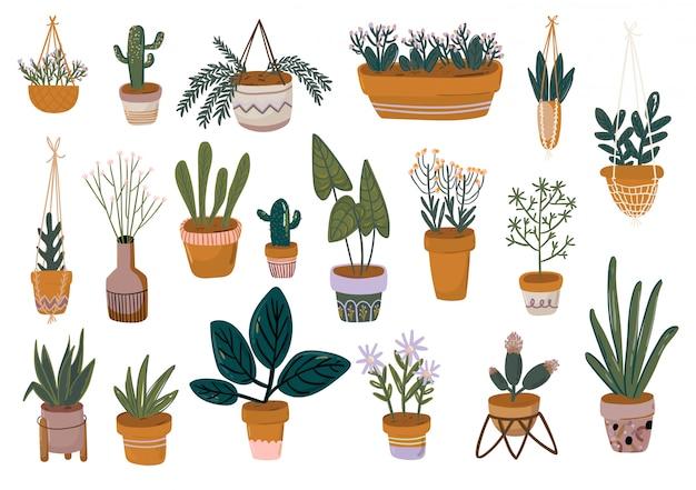 손으로 그린 집 식물, 냄비에 꽃, 녹색 단풍 식물과 낭만적 인 글자로 귀여운 꽃 세트. 웹, 카드, 포스터, 스티커, 배너, 초대장, 결혼식을위한 템플릿.
