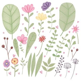 Коллекция милых цветов и листьев