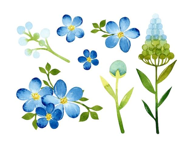 귀여운 꽃 수채화 요소 격리 설정