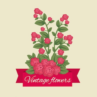 Cute flowers with natural petals and leaves