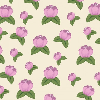Cute flowers with petals and leaves background