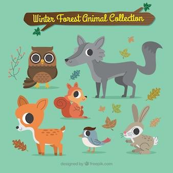 Симпатичная коллекция лесных животных