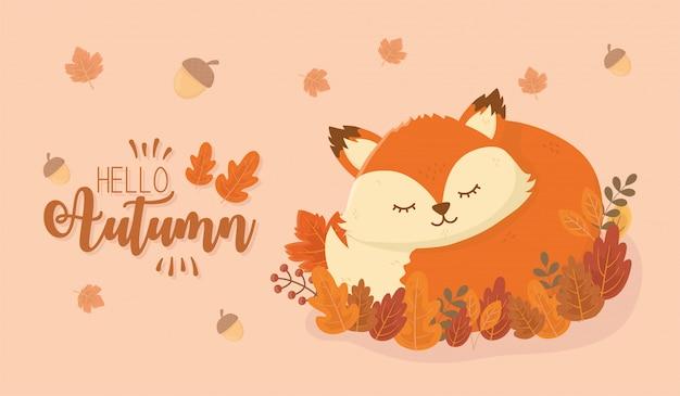 Cute fox in autumn season