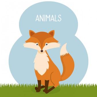 Cute fox in the field landscape character