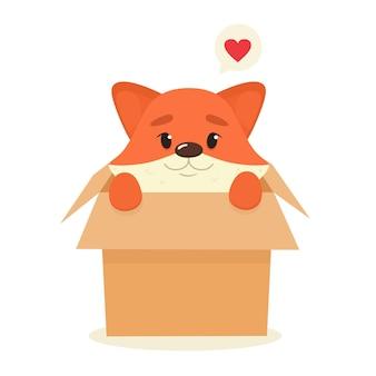 A cute fox looks out of a cardboard box.