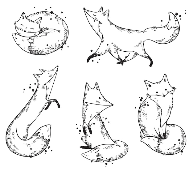 Cute foxes sketch, set of vector illustrations