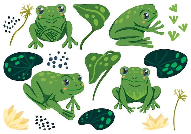 Симпатичные лягушки, водяные лилии листья плоские векторные иллюстрации. красочная коллекция в скандинавском стиле. абстрактные мультяшные животные. простые элементы для дизайна.