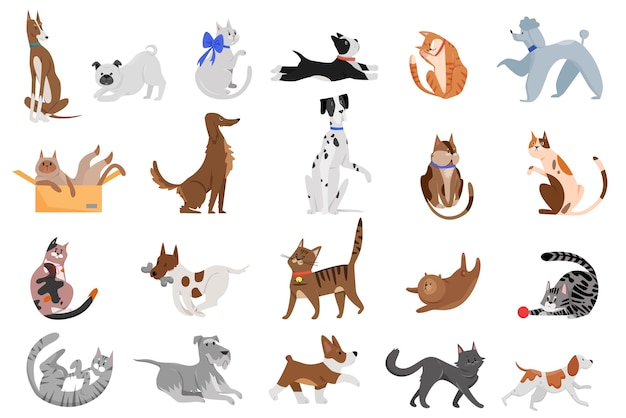 Cute funny cartoon domestic dogs and cats set