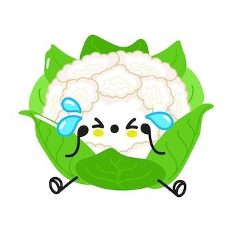 Cute funny cauliflower waving hand character
