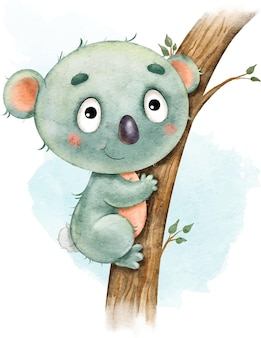 Cute funny funny koala on the tree painted in watercolor isolated on white
