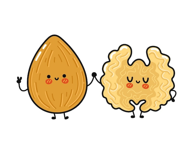 Cute funny happy almond and walnut character