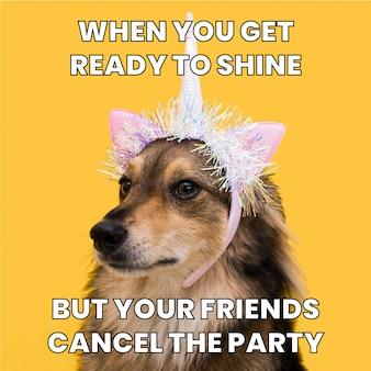 파티 밈을 빛나는 귀여운 재미 준비