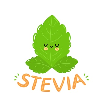 Cute funny stevia leafs character logo design. vector flat cartoon kawaii character illustration icon. isolated on white background. stevia text quote logo, sugar leafs cartoon character concept