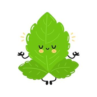 かわいい面白いステビアの葉のキャラクター。ベクトル手描きのシンプルなフラット漫画かわいいキャラクターイラストアイコン。白い背景で隔離。ステビアシュガーリーフ漫画のキャラクターのコンセプト