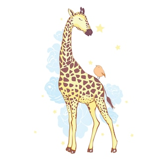 Cute giraffe isolated